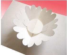 ray marshall flower 01.JPG